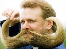 Macho Moustaches