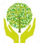 Help Save Trees