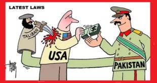 Terrorist Organisation