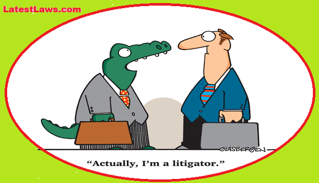 Alligator vs Litigator